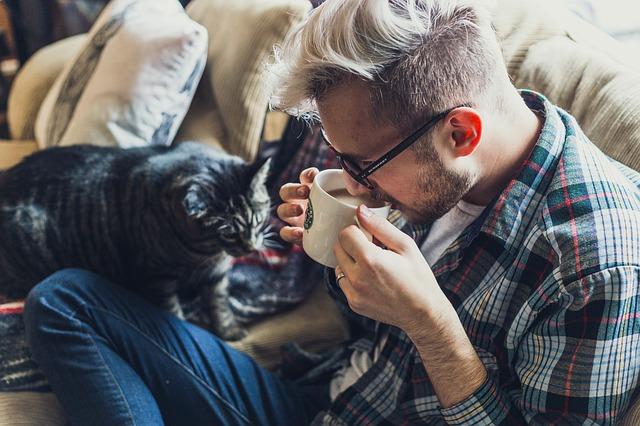 muž s kočkou na gauči